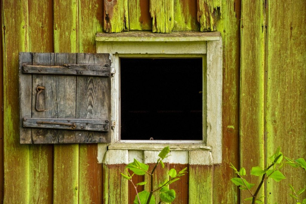 rotten wooden window