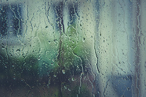 Cloudy Windows